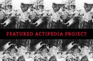 Actipedia: Pigasus for President
