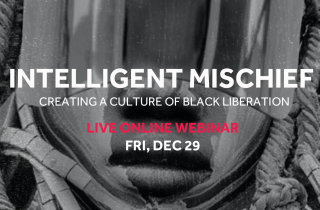 Our Next Webinar is Intelligent Mischief